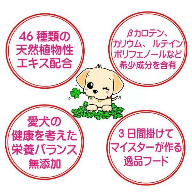 国産 無添加 自然食 健康 こだわり食材  【 お米のドッグフード 】 鶏肉・馬肉 800g 4個セット (3.2kg)  ドックフード (犬用全年齢対応) potitamaya-y 09
