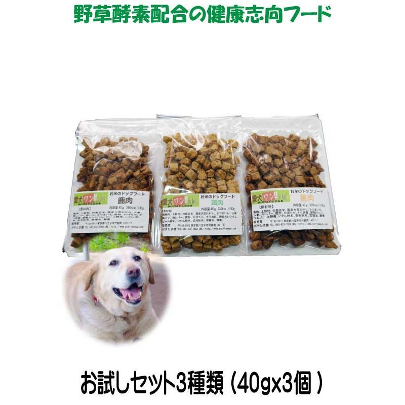 愛犬の健康 を気にする方の 国産 無添加 ドックフード お米の ドッグフード お試しセット2種類 鶏・馬 (犬用全犬種全年齢対応) potitamaya-y