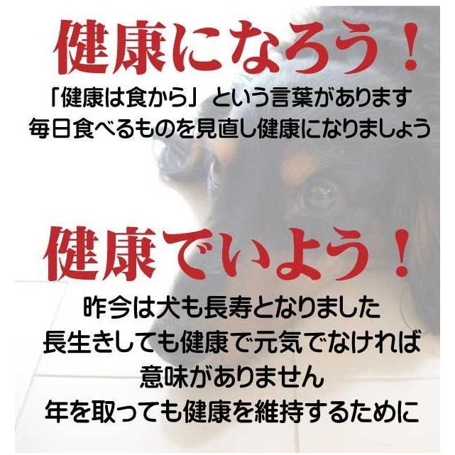 愛犬の健康 を気にする方の 国産 無添加 ドックフード お米の ドッグフード お試しセット2種類 鶏・馬 (犬用全犬種全年齢対応) potitamaya-y 02