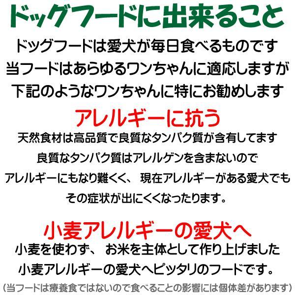 愛犬の健康 を気にする方の 国産 無添加 ドックフード お米の ドッグフード お試しセット2種類 鶏・馬 (犬用全犬種全年齢対応) potitamaya-y 11