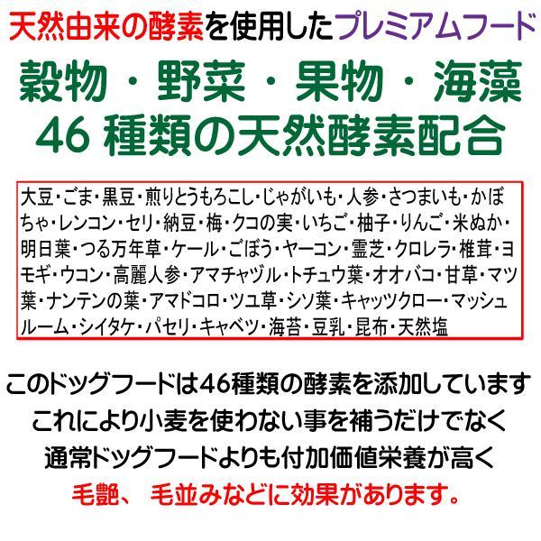愛犬の健康 を気にする方の 国産 無添加 ドックフード お米の ドッグフード お試しセット2種類 鶏・馬 (犬用全犬種全年齢対応) potitamaya-y 15