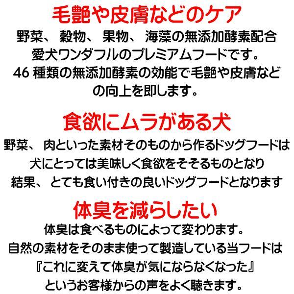 国産 無添加 自然食 健康 こだわり食材  【 お米のドッグフード 】 馬肉タイプ 2.5kg 2個セット (5kg)  ドックフード (犬用全年齢対応) potitamaya-y 13