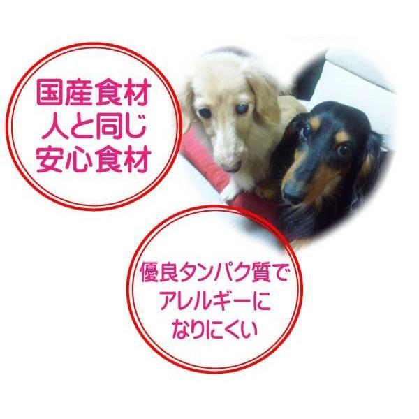 国産 無添加 自然食 健康 こだわり食材  【 愛犬ワンダフル 】 馬肉タイプ 2.5kg 2個 (5kg)セット   (小粒・普通粒) 犬用全年齢対応|potitamaya-y|09