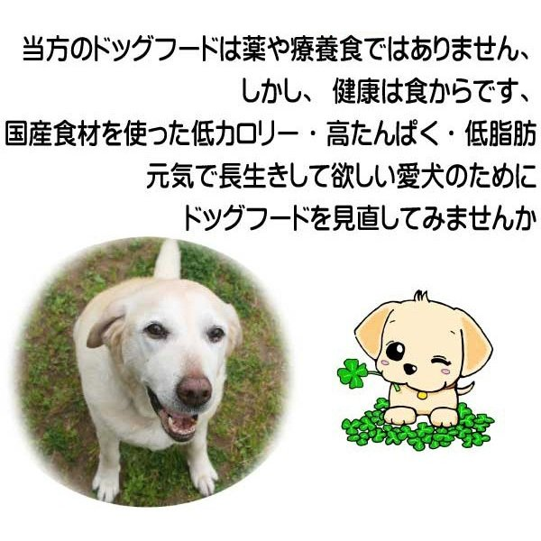国産 無添加 自然食 健康 こだわり食材  【 愛犬ワンダフル 】 馬肉タイプ  800g (小粒も選べます) ドッグフード (犬用全年齢対応)|potitamaya-y|06