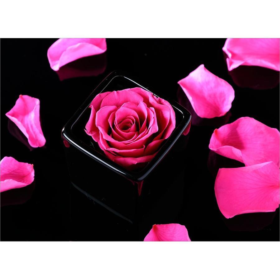 プリザーブドフラワー プレゼント ギフト 「ROSE in CUBE 1 PREMIUM BOX」|pourvousparis|05
