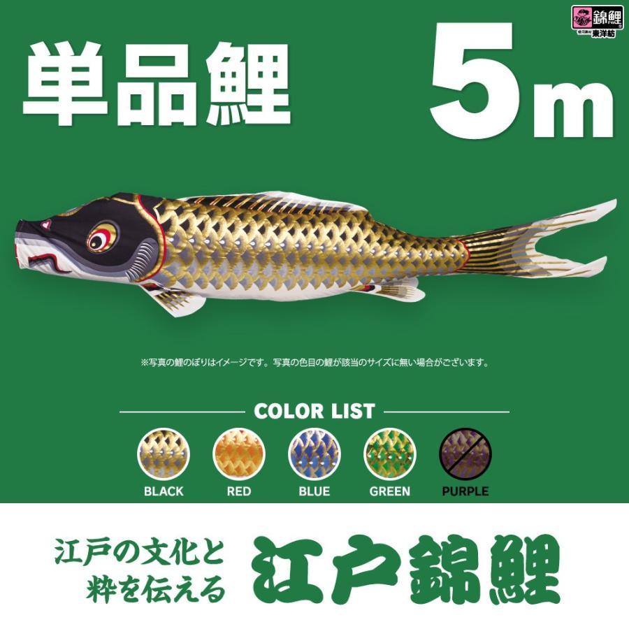 【こいのぼり 単品】 江戸錦鯉 5m 単品鯉