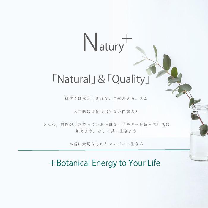 Natury+ ナチュリープラス ボタニカル 除菌 消臭 抗菌 スプレー 300ml ノンアルコール 植物由来 アロマ 日本製|premium-concierge|03