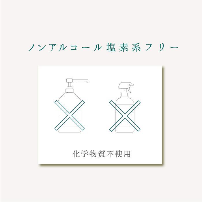 Natury+ ナチュリープラス ボタニカル 除菌 抗菌 消臭 アロマ スプレー マスク ノンアルコール 300ml×2本 日本製|premium-concierge|09