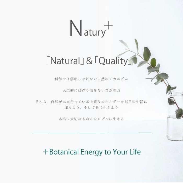 Natury+ ナチュリープラス ボタニカル マスクスプレー 50ml×3本 ノンアルコール 除菌 消臭 抗菌 肌荒れ アロマ 日本製|premium-concierge|17