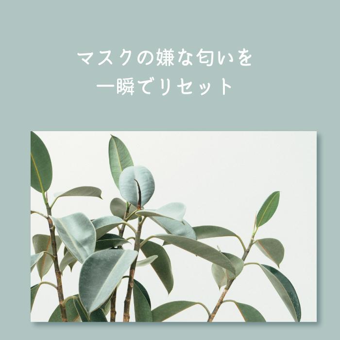 Natury+ ナチュリープラス ボタニカル マスクスプレー 50ml×3本 ノンアルコール 除菌 消臭 抗菌 肌荒れ アロマ 日本製|premium-concierge|07