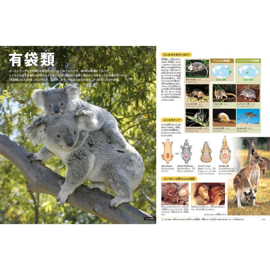 DVD付 新版 動物 (小学館の図鑑 NEO)|premium-direct|02