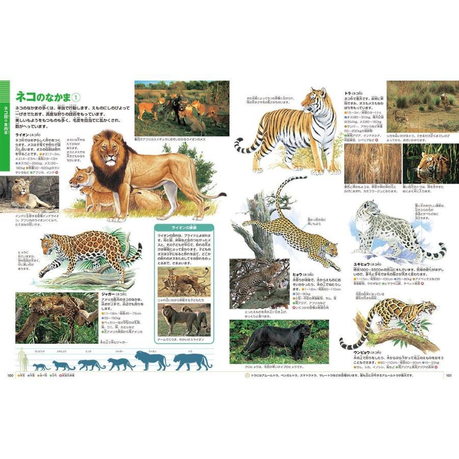 DVD付 新版 動物 (小学館の図鑑 NEO)|premium-direct|03