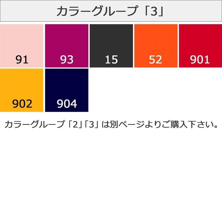 サフィール カラー補修クリーム 送料無料 レノベイティングカラー補修チューブ 補色 25ml 全47色 色グループ 3-1 SAPHIR|primeavenue|07