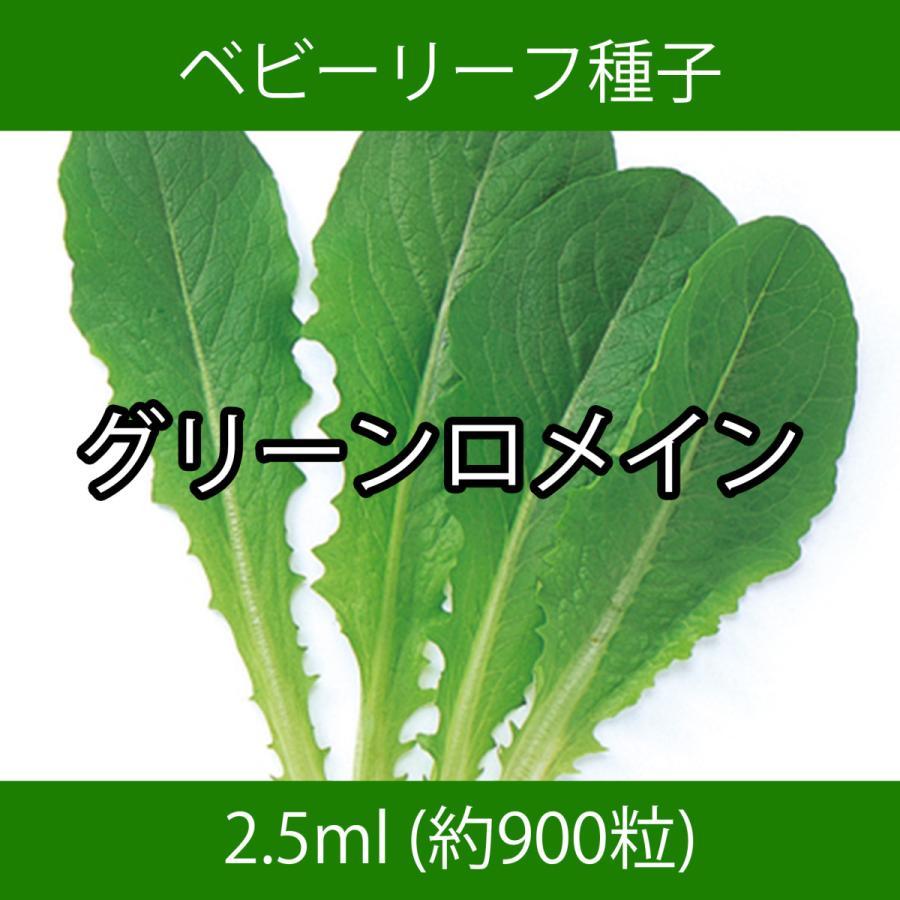 ベビーリーフ種子 B-05 グリーンロメイン 2.5ml|printstudio-jp