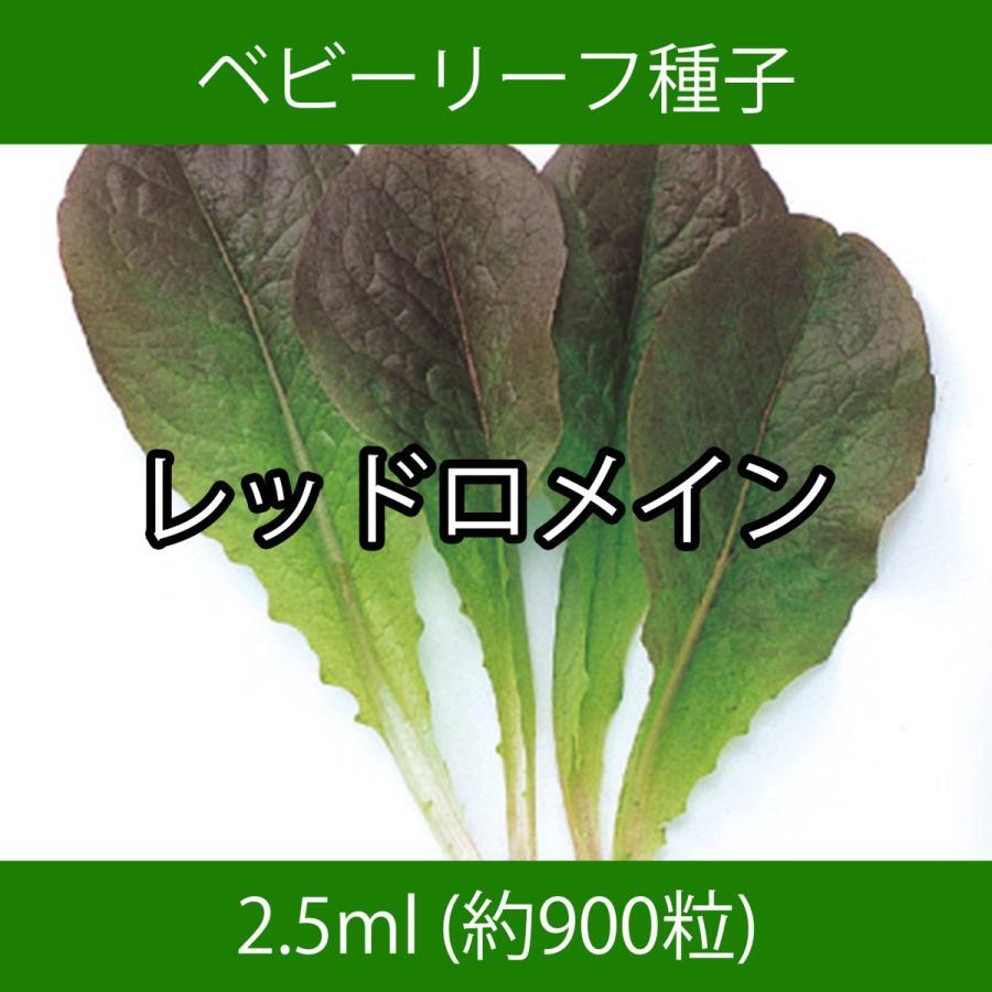 ベビーリーフ種子 B-06 レッドロメイン 2.5ml|printstudio-jp