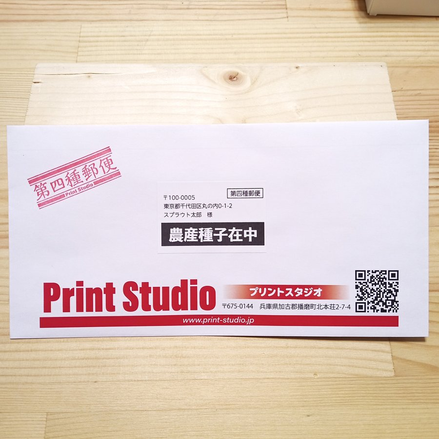 ベビーリーフ種子 B-06 レッドロメイン 2.5ml|printstudio-jp|05