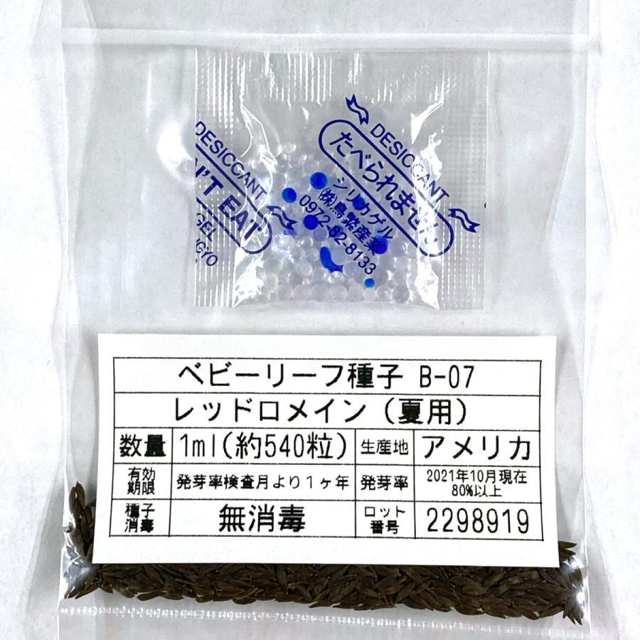 ベビーリーフ種子 B-07 レッドロメイン(夏用) 1ml printstudio-jp 03