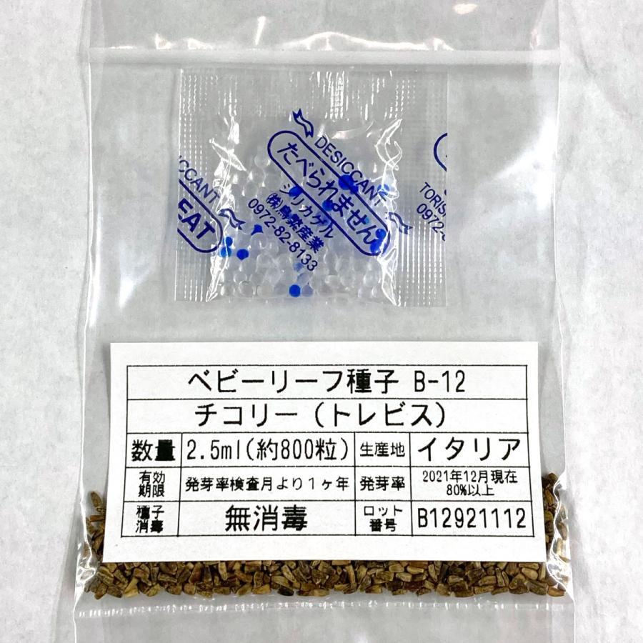 ベビーリーフ種子 B-12 チコリー(トレビス)|printstudio-jp|03