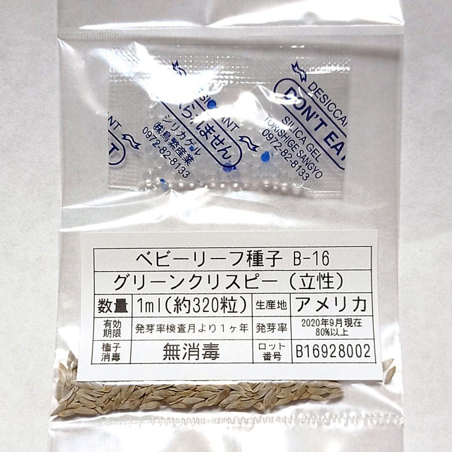 ベビーリーフ種子 B-16 グリーンクリスピー(立性) 1ml|printstudio-jp|03