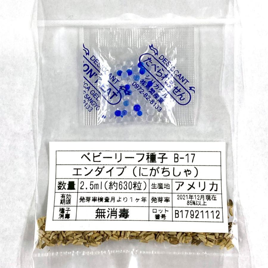 ベビーリーフ種子 B-17 エンダイブ(にがちしゃ) 2.5ml|printstudio-jp|03