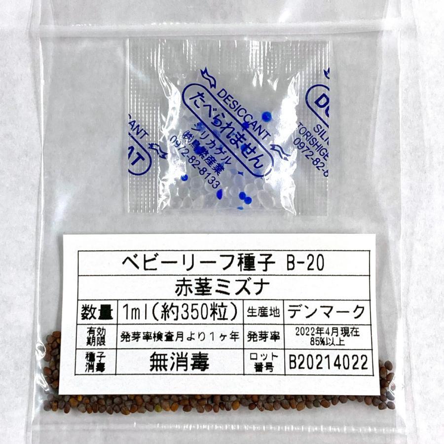 ベビーリーフ種子 B-20 赤茎ミズナ 1ml printstudio-jp 03