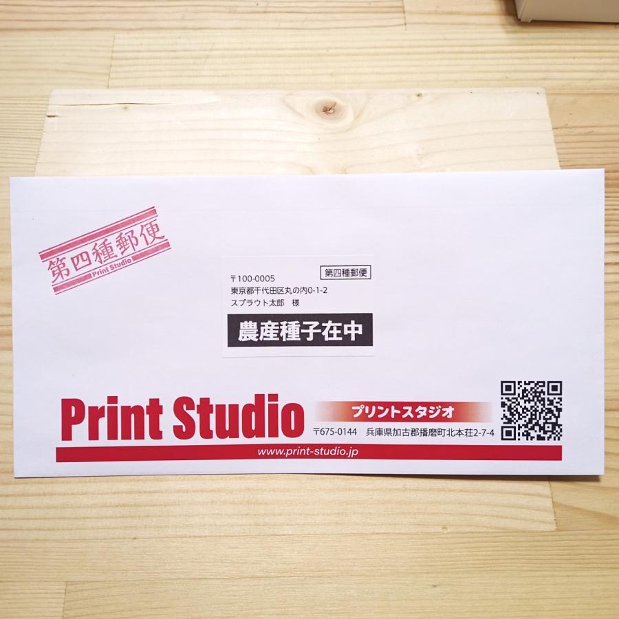 ベビーリーフ種子 B-20 赤茎ミズナ 1ml printstudio-jp 05