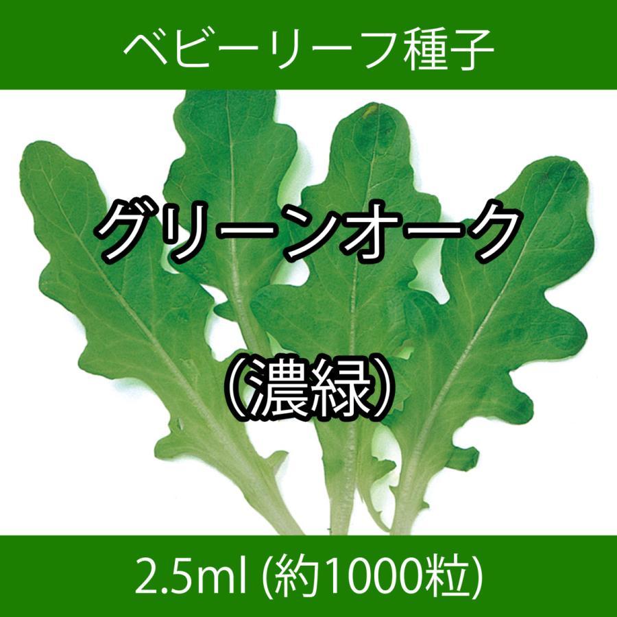 ベビーリーフ種子 B-47 グリーンオーク(濃緑) 2.5ml|printstudio-jp