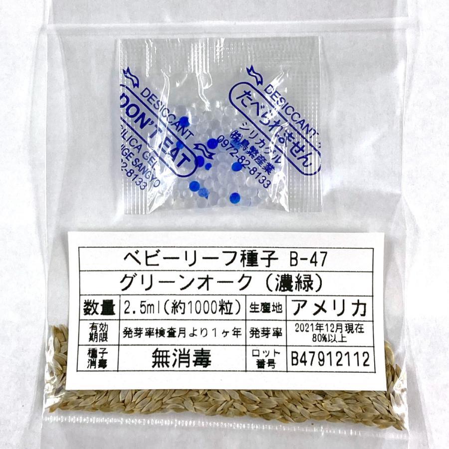 ベビーリーフ種子 B-47 グリーンオーク(濃緑) 2.5ml|printstudio-jp|03