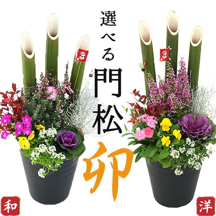 選べる門松『 お正月寄せ植え 』 (正月飾り 玄関などに) 門松アレンジ寄せ植え 7号鉢植え 単品( 送料無料 ) produce87