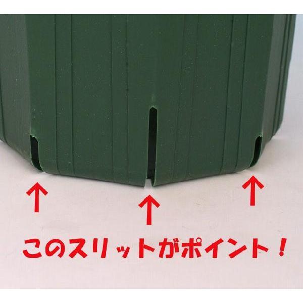 のびのび育つ 『 スリット鉢 』 18cm (6号) produce87 02