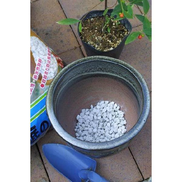 鉢底の石 『 ごろ土 』 10リットル|produce87|02