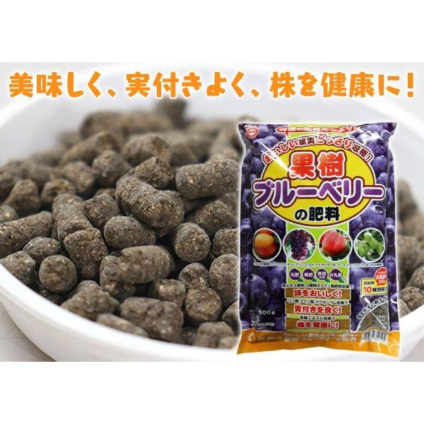 果樹・ブルーベリーの肥料 500g|produce87|04
