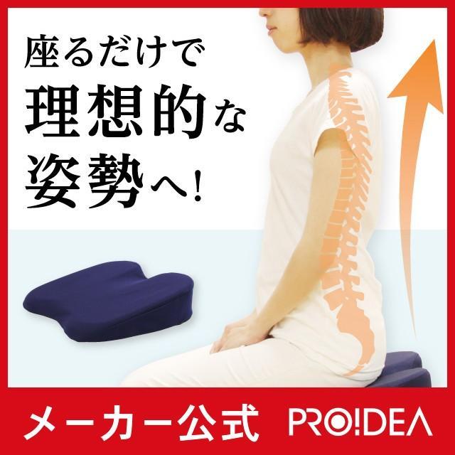 姿整快適クッション 姿勢 クッション オフィス デスクワーク 猫背 椅子 座椅子 プロイデア proidea