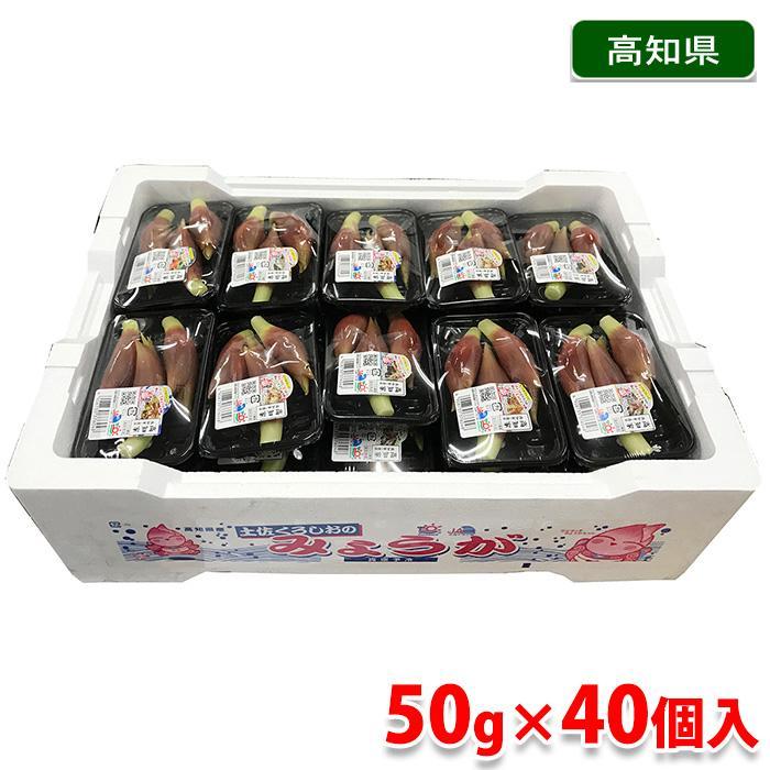 高知県産 みょうが 50gパック×40個入り(箱) promart-jp