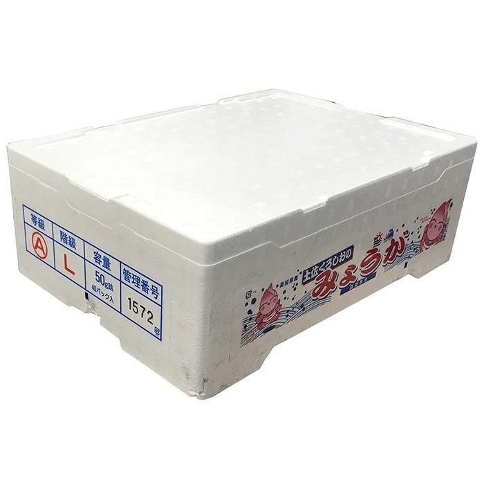 高知県産 みょうが 50gパック×40個入り(箱) promart-jp 05