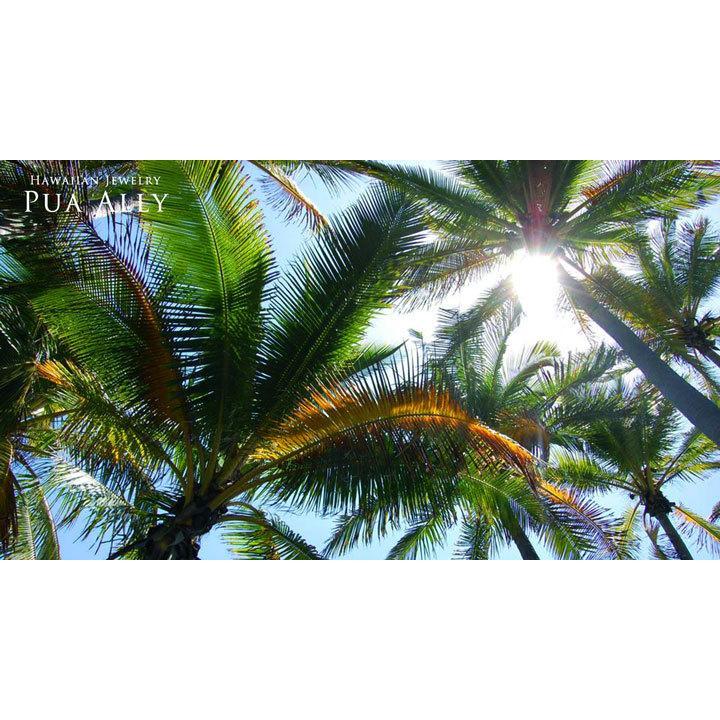【K14 サン ( 太陽 ) ネックレス S 】 14金 ハワイアンジュエリー ハワジュ Hawaiian jewelry Puaally プアアリ レディース メンズ ペア La ラー ヘリックス|puaally|09