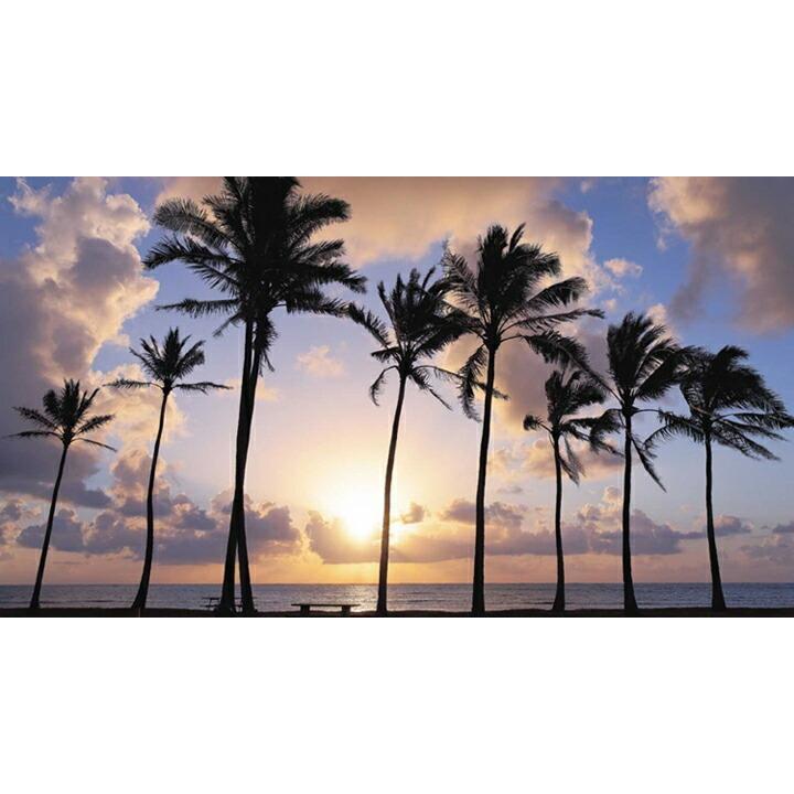 【K14 デュークカハナモク ペンダントトップ】 チェーン別売り14金 ハワイアンジュエリー Hawaiian jewelry Puaally レディース メンズ ペア サーフィン 男性|puaally|10