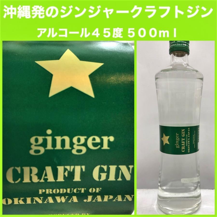 【石川酒造】ジンジャークラフトジン 45度 500ml|pukarasuya