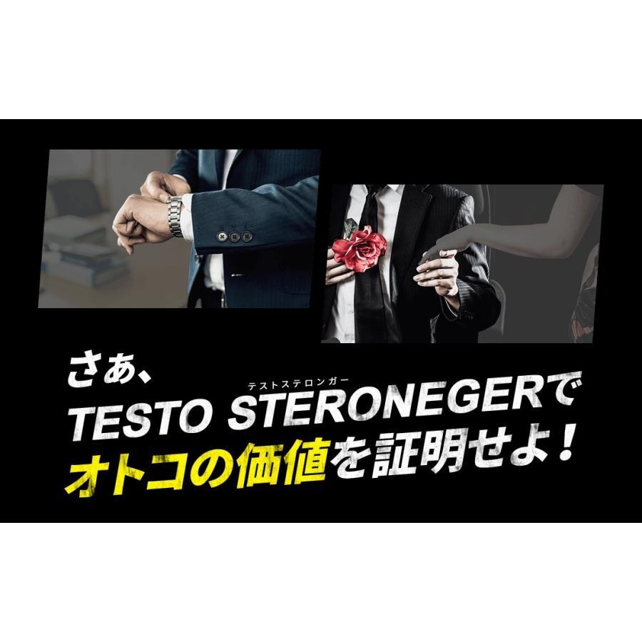 テストステロンガー テストステロン 増大 トンカットアリ 亜鉛 アルギニン オニオン タマネギ 筋トレ 男性ホルモン 腹筋 6パック サプリ メンズ pureseek 11