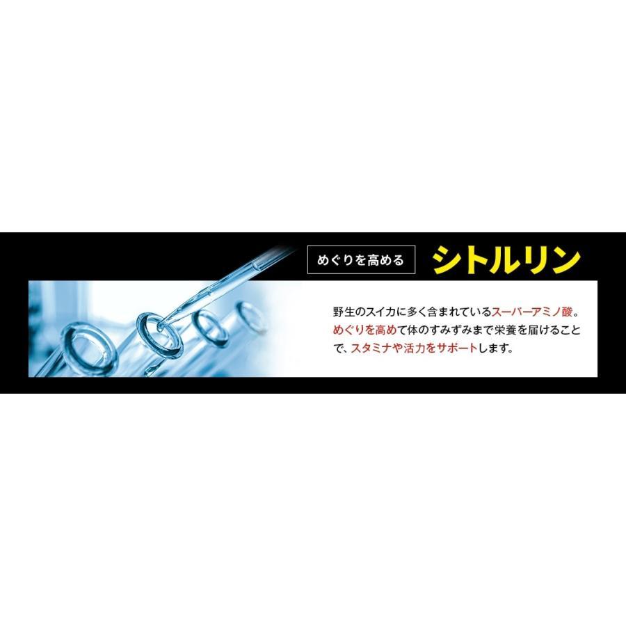 テストステロンガー テストステロン 増大 トンカットアリ 亜鉛 アルギニン オニオン タマネギ 筋トレ 男性ホルモン 腹筋 6パック サプリ メンズ pureseek 17