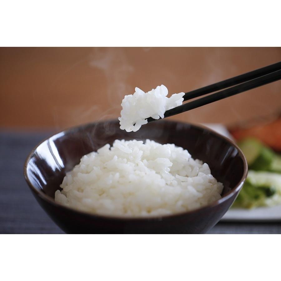糖質ゼロ ぷるんとやみつきになる食感、「ぷるんちゃん」粒5袋+麺5袋 purunchan 02