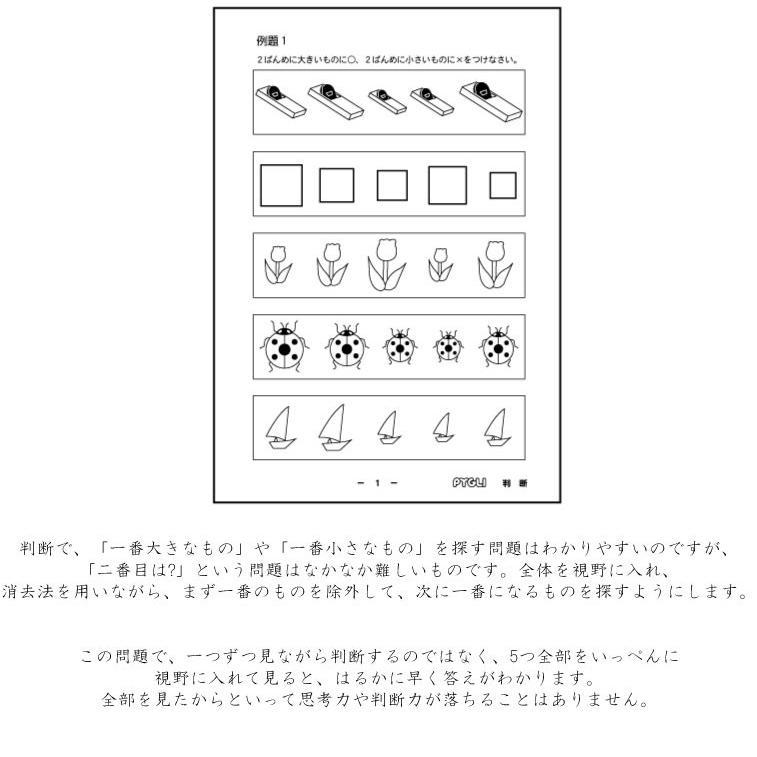 小学校入試対策 能力育成問題集5 判断|pygli|02