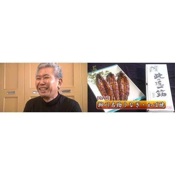 【送料無料】国産うなぎの蒲焼2本入り【うなぎの江口商店】【国産】【うなぎ本場福岡県柳川市】ギフト 贈答用 qtsuhanshop 05