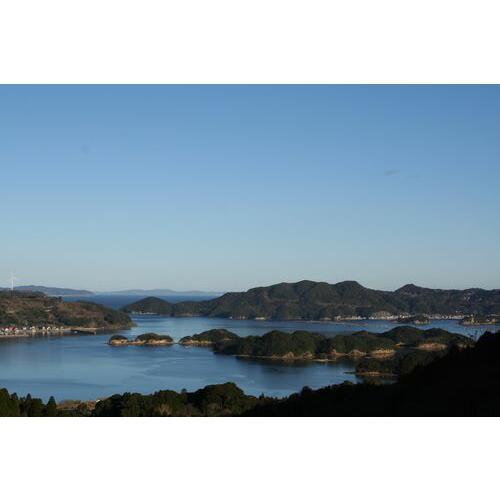 【送料無料】【仮屋漁業組合】玄海町サザエ(1.5キロ)|qtsuhanshop|03