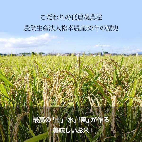 伊勢の大地・名水「宮川」の水が育てる  コシヒカリ5kg【松幸農産】 qu-shop 03