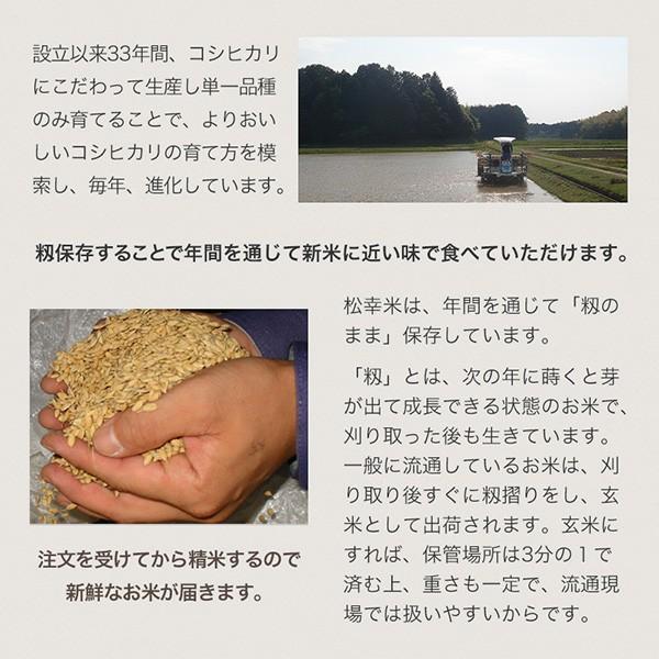 伊勢の大地・名水「宮川」の水が育てる  コシヒカリ5kg【松幸農産】 qu-shop 05