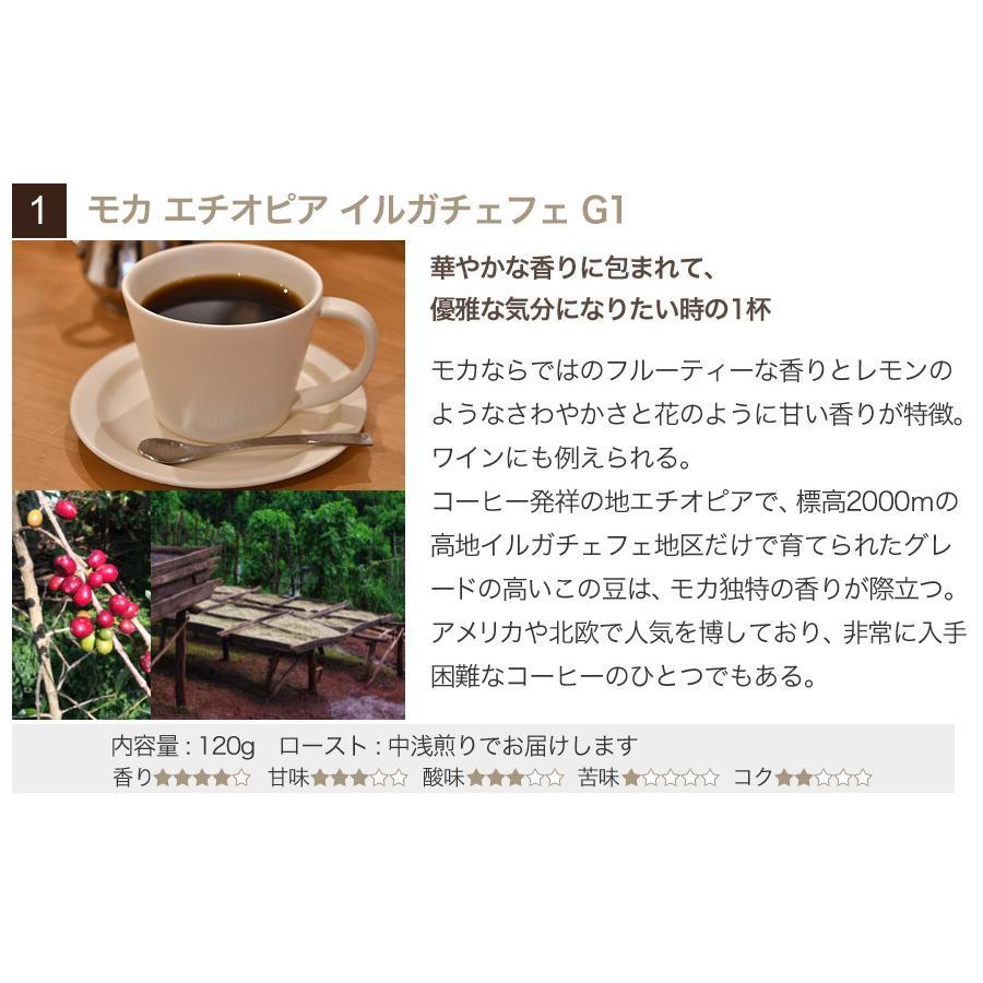 スペシャルティーコーヒー120g×3種類お試しセット【ペンギン堂】【ネコポス便・送料込】 qu-shop 03