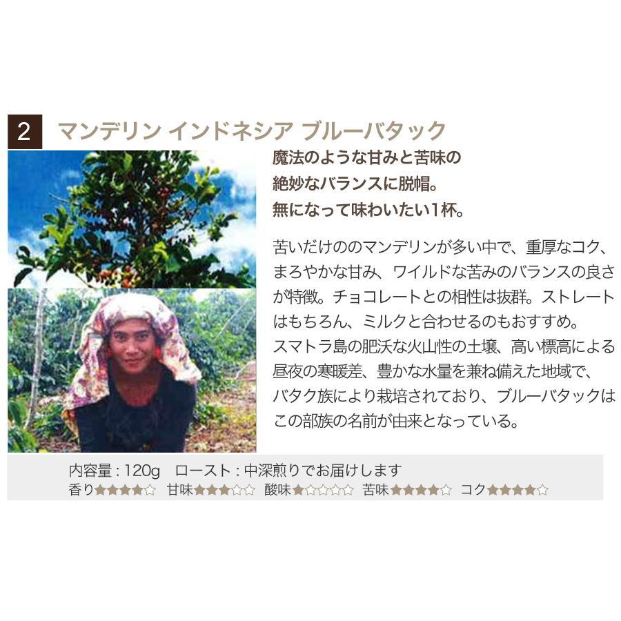 スペシャルティーコーヒー120g×3種類お試しセット【ペンギン堂】【ネコポス便・送料込】 qu-shop 04