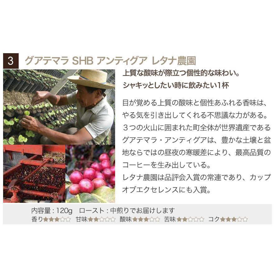 スペシャルティーコーヒー120g×3種類お試しセット【ペンギン堂】【ネコポス便・送料込】 qu-shop 05