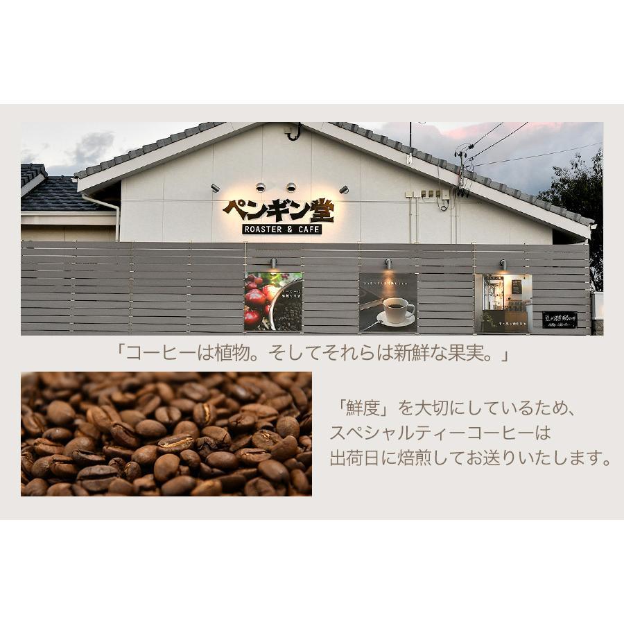 スペシャルティーコーヒー120g×3種類お試しセット【ペンギン堂】【ネコポス便・送料込】 qu-shop 06